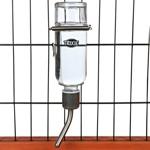 TRIXIE Small Animal Glass Water Bottle Поилка стеклянная Для грызунов (250 мл)